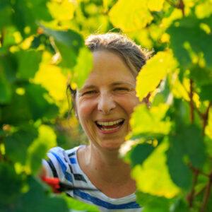 virtuelle Weinbergwanderung Barbara Roth Weingut Wilhelmshof
