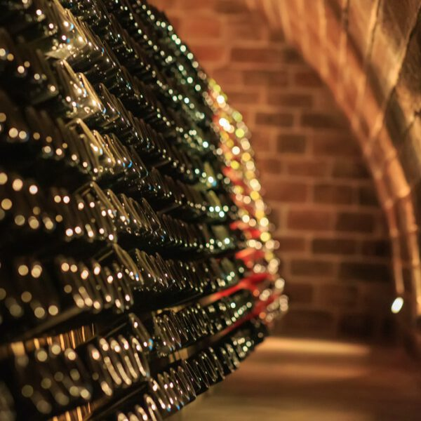 Unser Weinkeller im Wilhelmshof